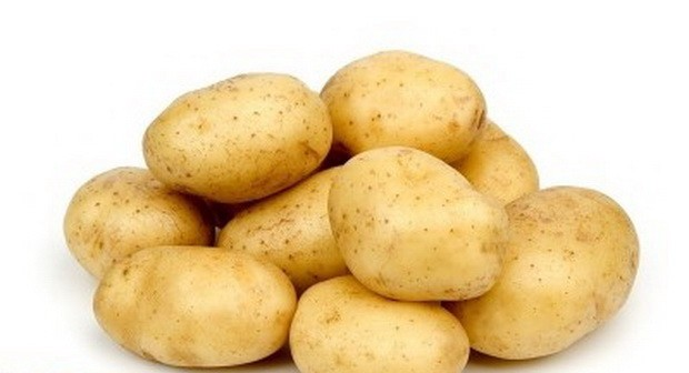 sort-kartofelya-almera