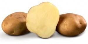 sort-kartofelya-biogold