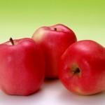 Описание сорта яблони Адыгейское