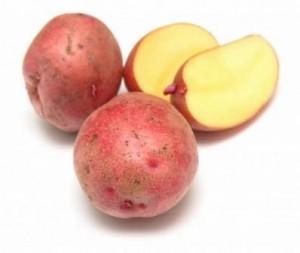 картофель ильинский описание сорта фото