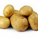 Описание сорта картофеля Коломба