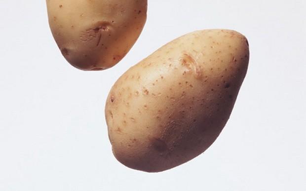 foto-sorta-kartofelya-krasavica