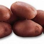 Описание сорта картофеля Леди Розетта