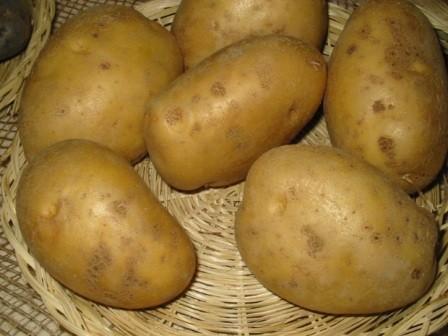 foto-sorta-kartofelya-monaliza