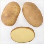 Описание сорта картофеля Зорачка