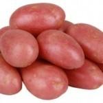 Описание сорта картофеля Олева