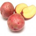 Описание сорта картофеля Розанна