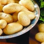 Описание сорта картофеля Салин