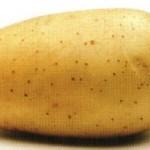 Описание сорта картофеля Фелокс