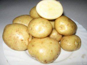 foto-sorta-kartofelya-adretta