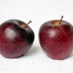 Описание сорта яблони Ред Делишес