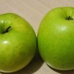 Описание сорта яблони Ренет сочинский