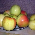 Описание сорта яблони Сергиана