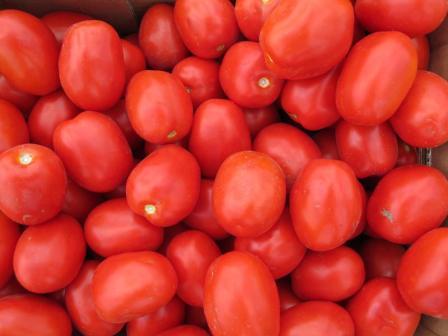 foto-sorta-tomata-pomidora-advans