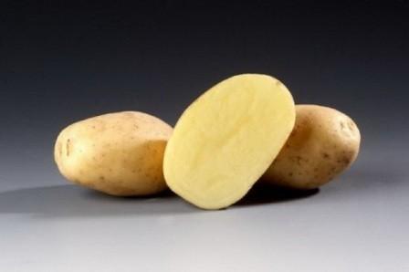 foto-sorta-kartofelya-santana
